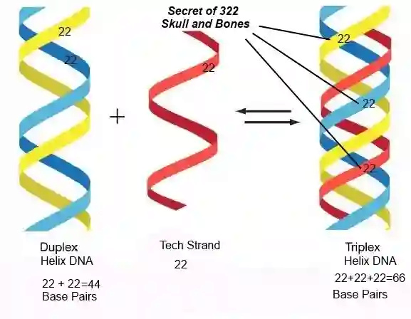 Nicholson1968 - генетические карусели невиданной щедрости 5cj8oe10