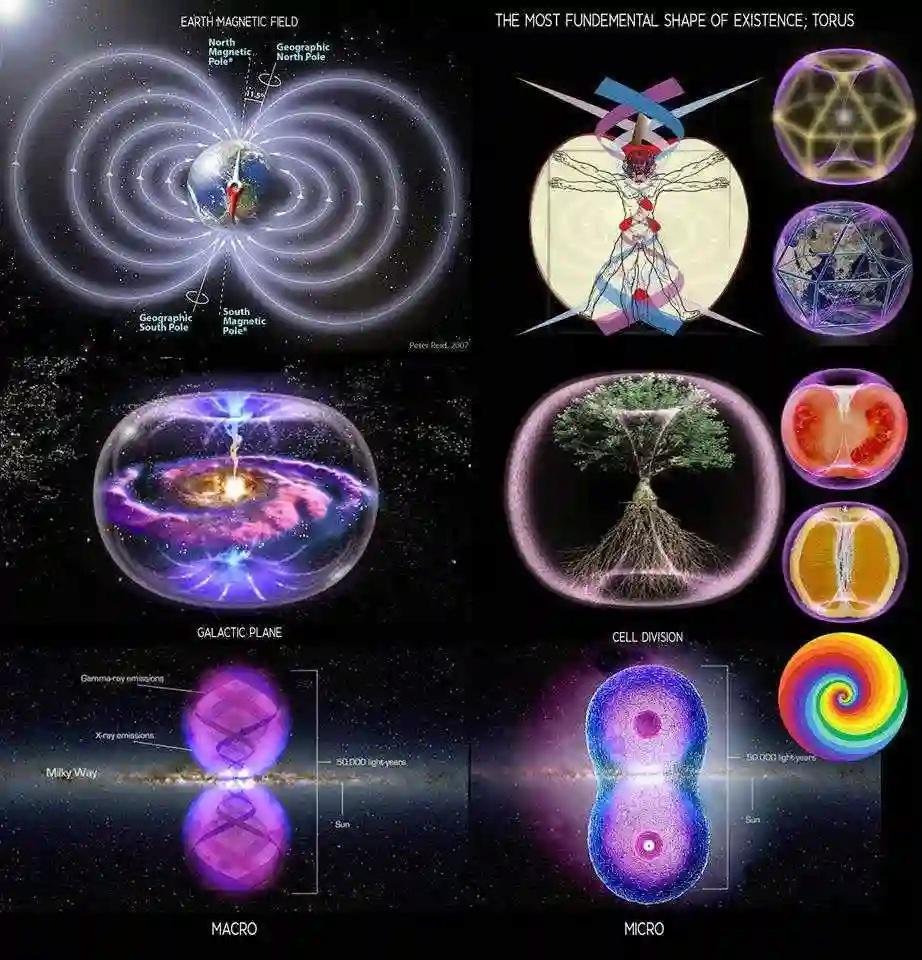ТОР - утверждённая свыше форма энергии/силы  7fuazo10