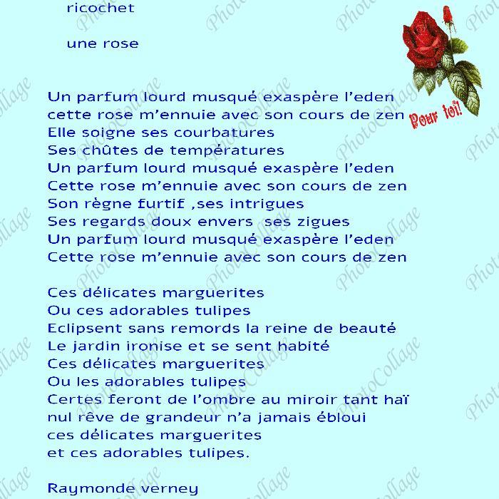 ricochet : une rose Ricoch10
