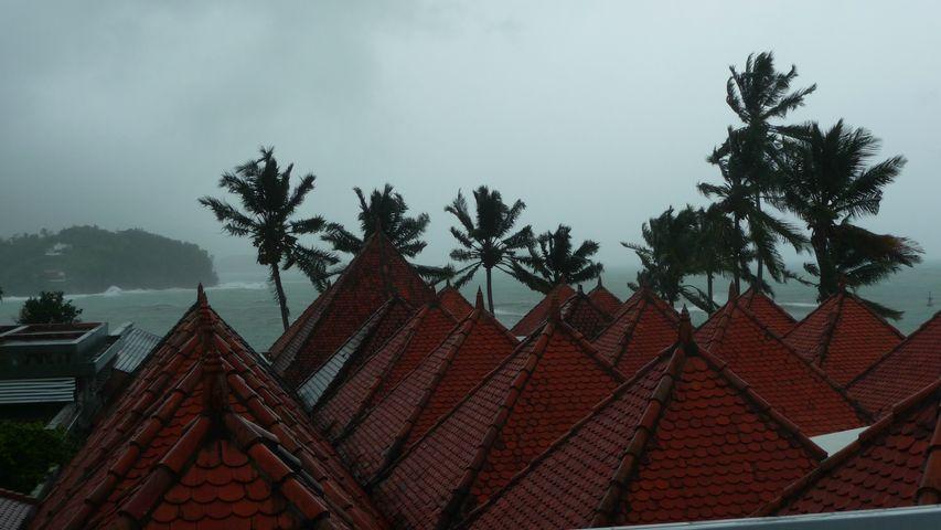 Ouragan OMAR !!! Octobre 2008 !!! P1000818