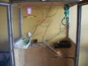 transformation d'un meuble en voiliere (photo) Moi_1313