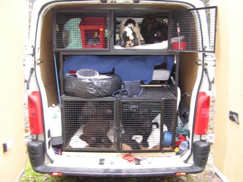 quel vehicule pour transporter vos chiens? - Page 2 Tous-d10