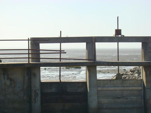 souvenir d'une balade au bord de mer Dsc04714