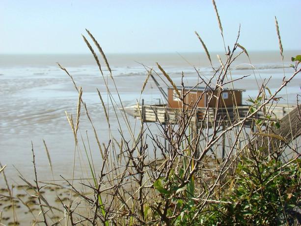 souvenir d'une balade au bord de mer Dsc04717