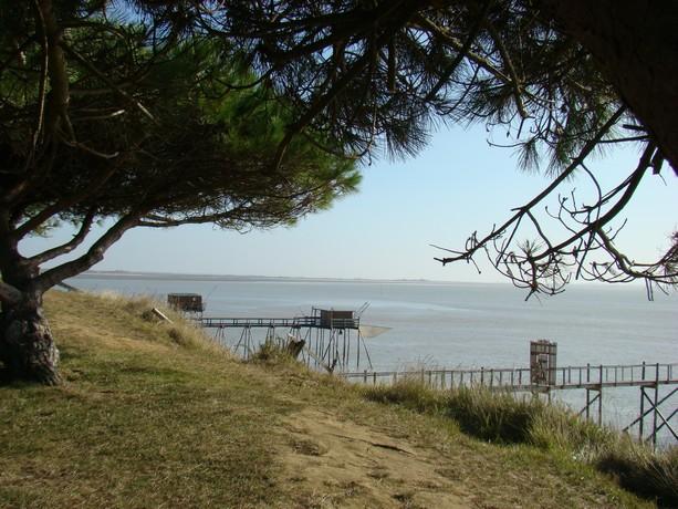 souvenir d'une balade au bord de mer Dsc04720