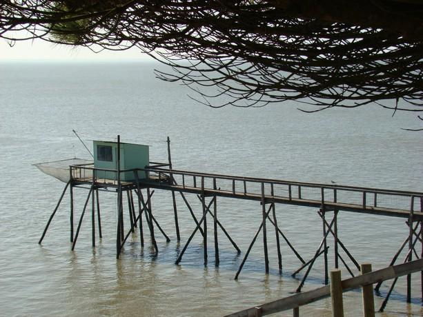 souvenir d'une balade au bord de mer Dsc04810