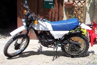 DTMX 125cc Membres / Modèles endurisés 100_3313