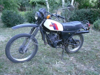 DTMX 125 cc MEMBRES : Personnalisées 216a10