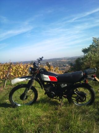 DTMX 125cc Membres / Mod. 1978 Dsc_0110