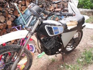 DTMX 125 cc MEMBRES : Personnalisées Dscf0610
