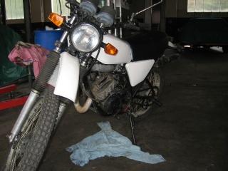 DTMX 125 cc MEMBRES : Personnalisées Img04310