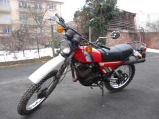 DTMX 125cc Membres / Mod. 1981 P1000510
