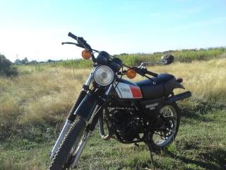DTMX 125cc Membres / Mod. 1978 P29-0910