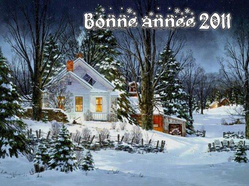 Bonne année 2011 Bonne-11