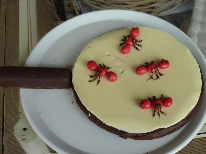 insectes et petites bêtes de jardin (fourmi, sauterelles...) P1010310