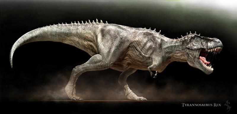 Paleontologie, l'actu... Rtema153
