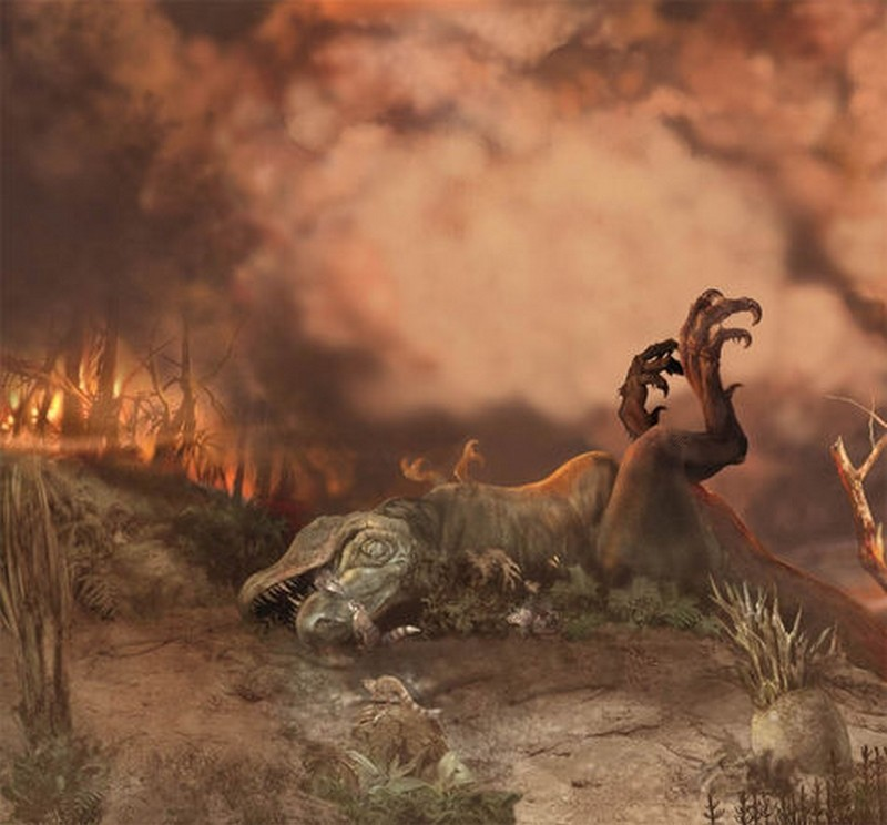 Paleontologie, l'actu... Rtema155