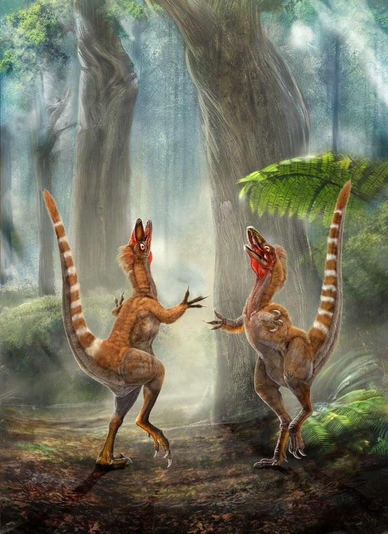 Paleontologie, l'actu... Sinosa10