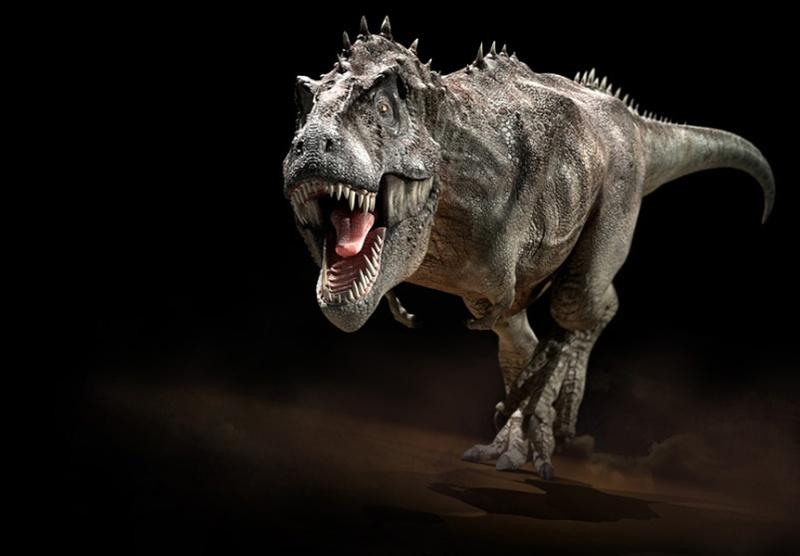 Paleontologie, l'actu... T-rex11