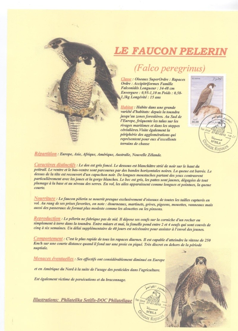 Emission Les rapaces 2010 Doc_ph10