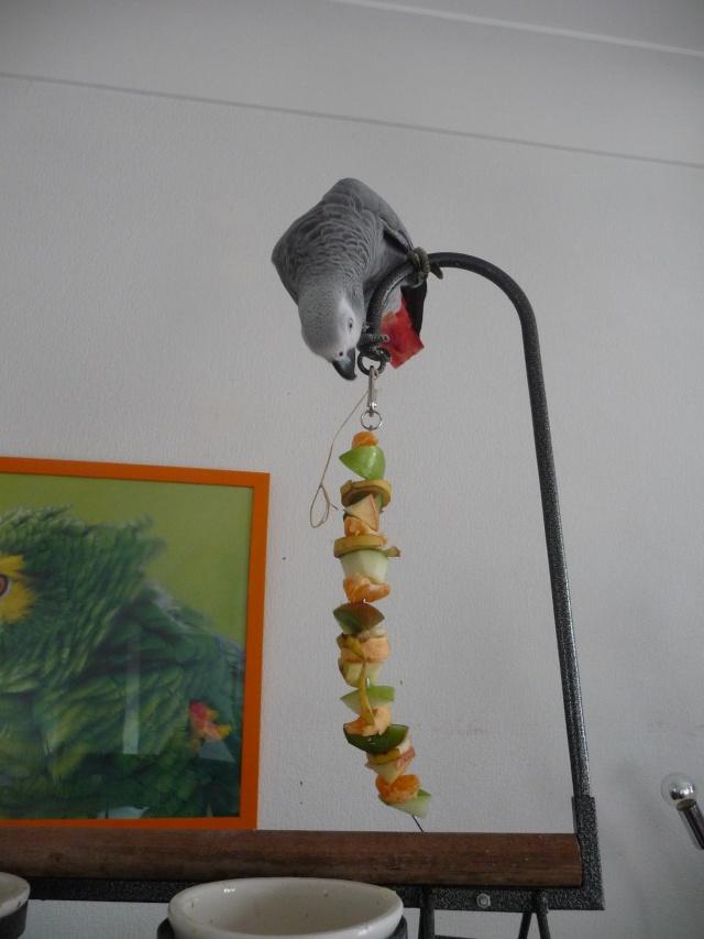 Brochettes de fruits et foraging. Dacemb39