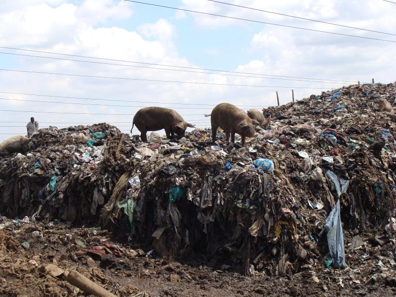 Mission à Nairobi-Slum de Dandora Dandor10