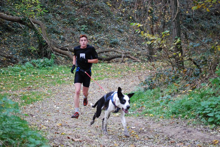 """Le team """"des chiens, des sport, une seule passion"""" - Page 2 15032410"""