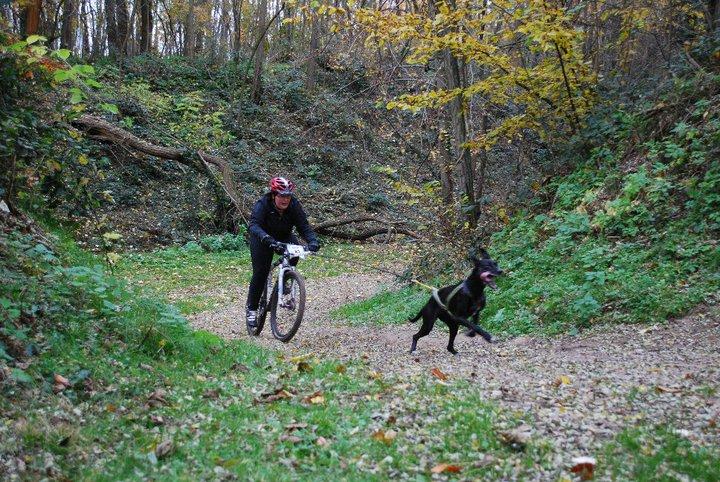 """Le team """"des chiens, des sport, une seule passion"""" - Page 2 74223_10"""