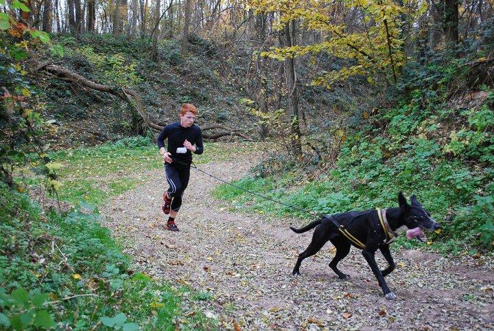 """Le team """"des chiens, des sport, une seule passion"""" - Page 2 74498_10"""