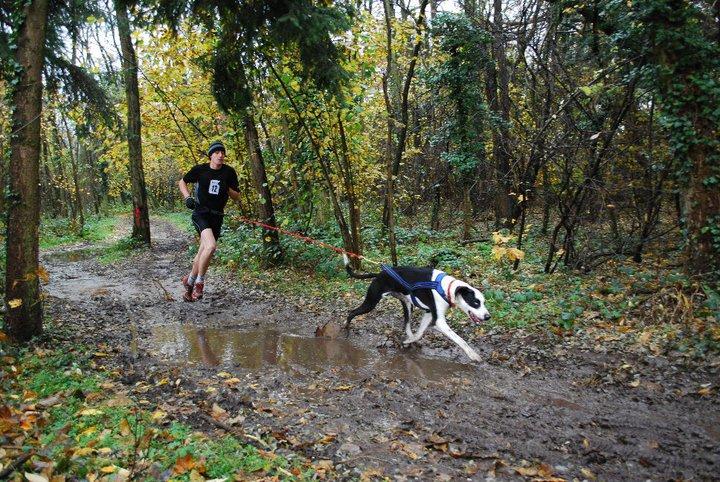 """Le team """"des chiens, des sport, une seule passion"""" - Page 3 76853_10"""
