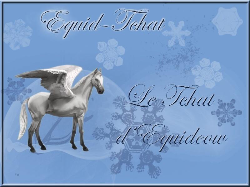 Equid-tchat