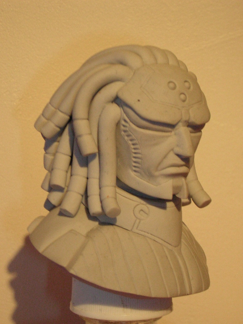 WIP de Darthchris [ nouveau buste fini] Dscn6522