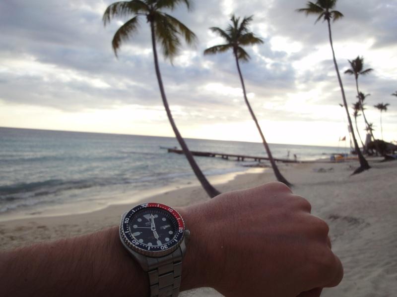 """Quelle """"Toolwatch"""" pour compléter ma Reverso Grande date? Dsc00111"""