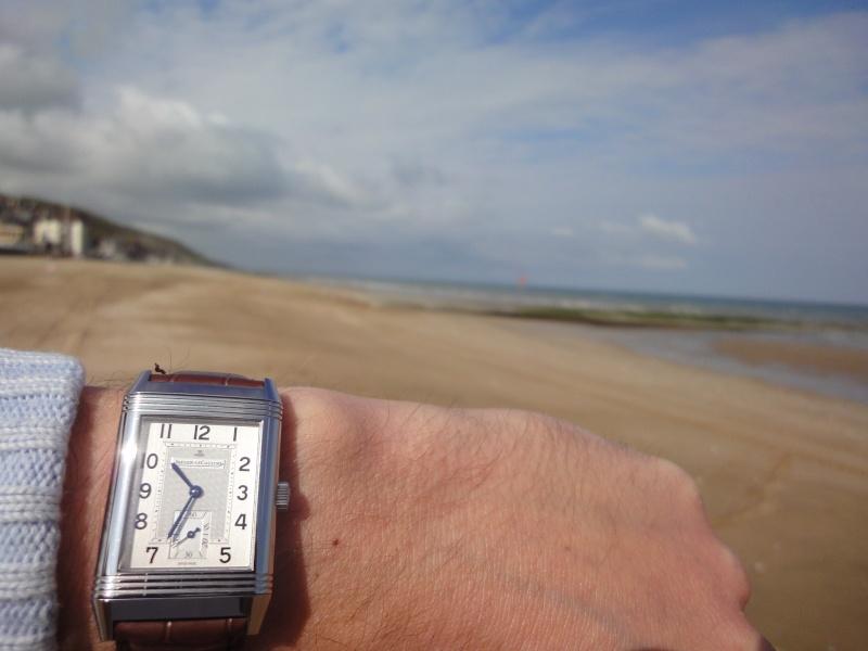 Feu de vos montres à aiguilles bleues Dsc00310