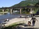 Le Forum du Rhodesian Ridgeback - Portail Sarlat12