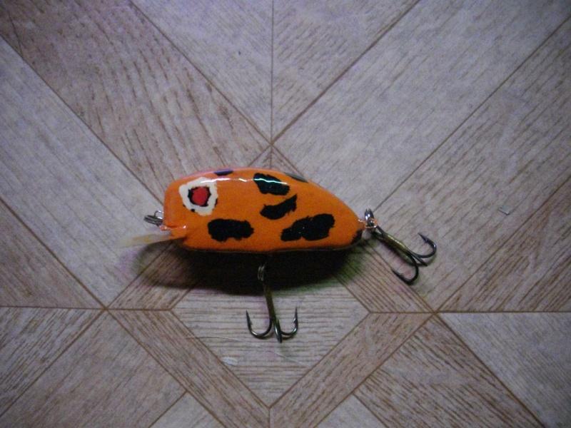 poisson nageur japonnais Imgp1611