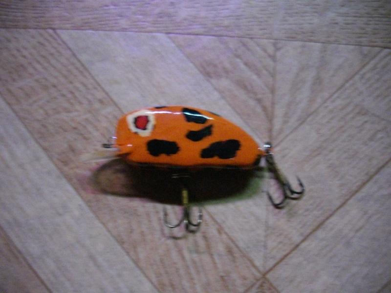 poisson nageur japonnais Imgp1614