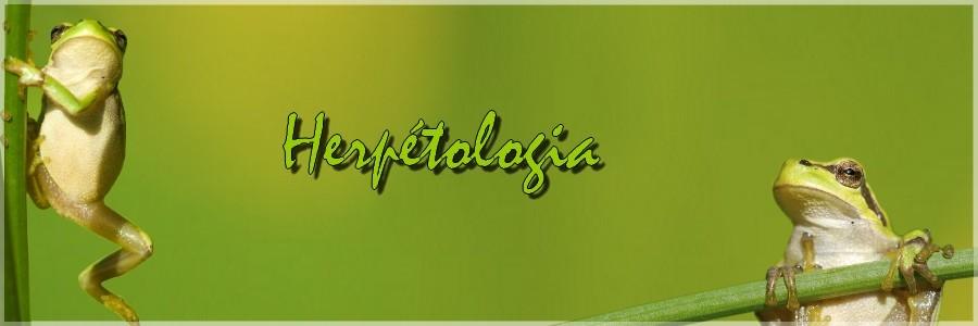 Herpétologia