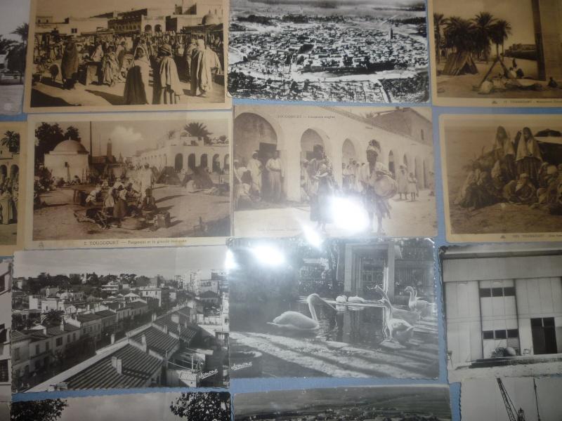 photos salon de Setif - Page 3 P1030658