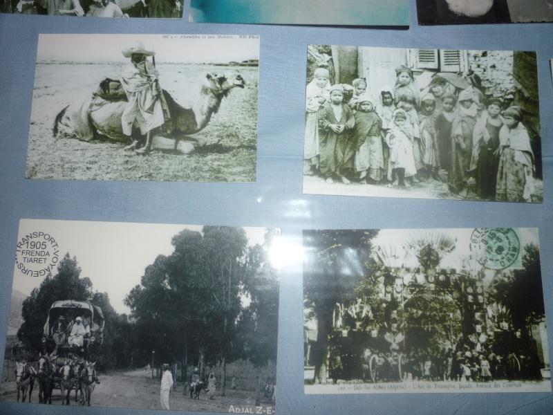 photos salon de Setif - Page 3 P1030661