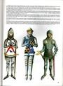 chevalier anglais Img03810