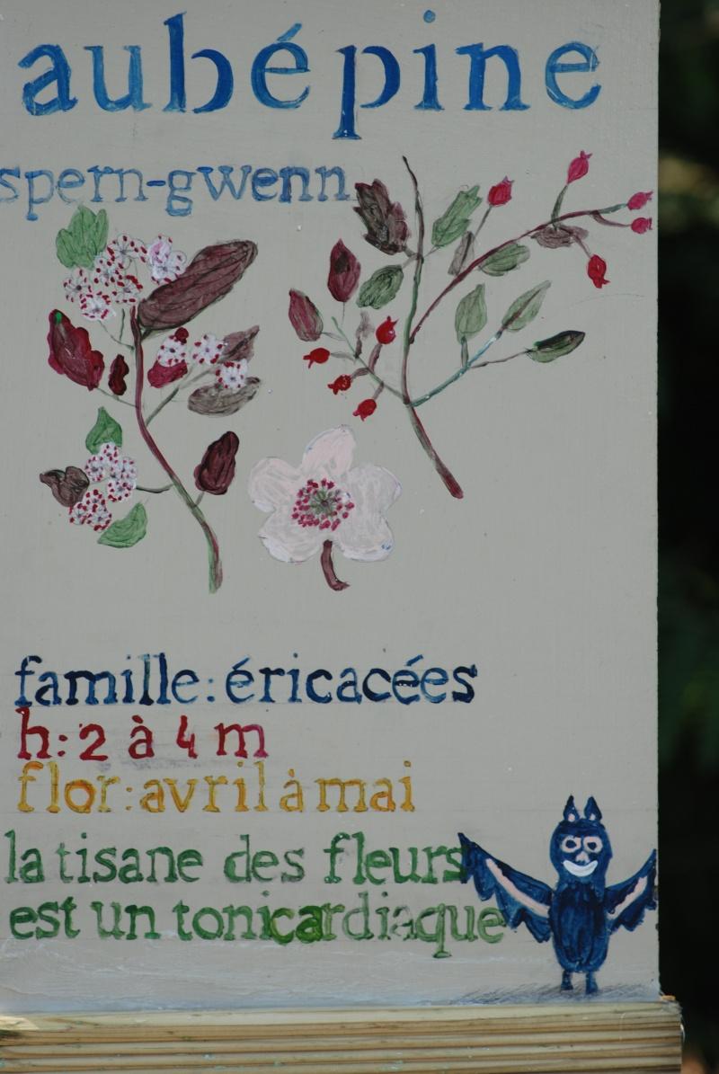 Avis aux botanistes et naturalistes! Dsc_0017