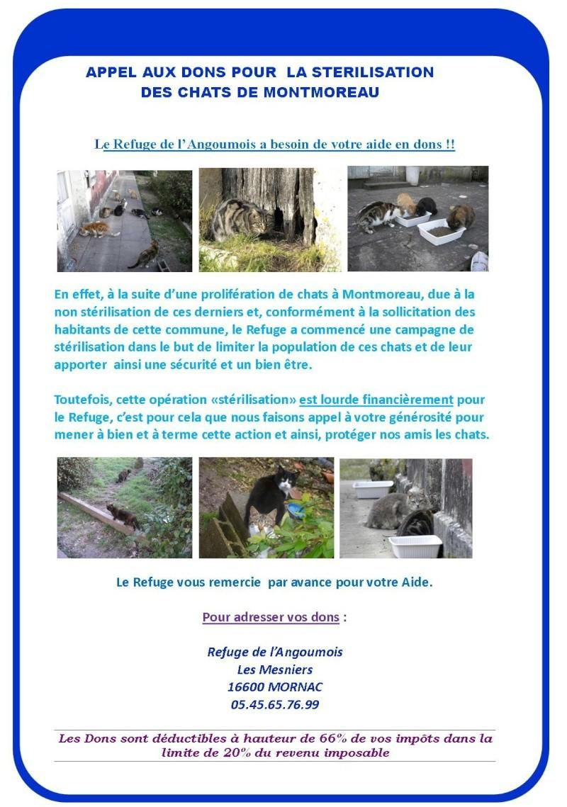 Appel aux dons pour la stérilisation des chats de Montmoreau(16) Compos10