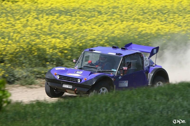 buggy - Photos of car 25 (purple buggy English) _mg_4912