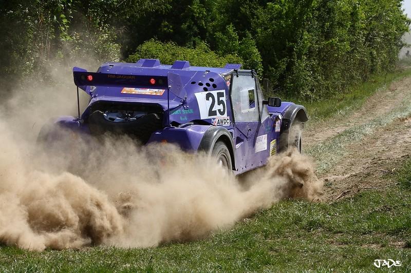 buggy - Photos of car 25 (purple buggy English) _mg_5110