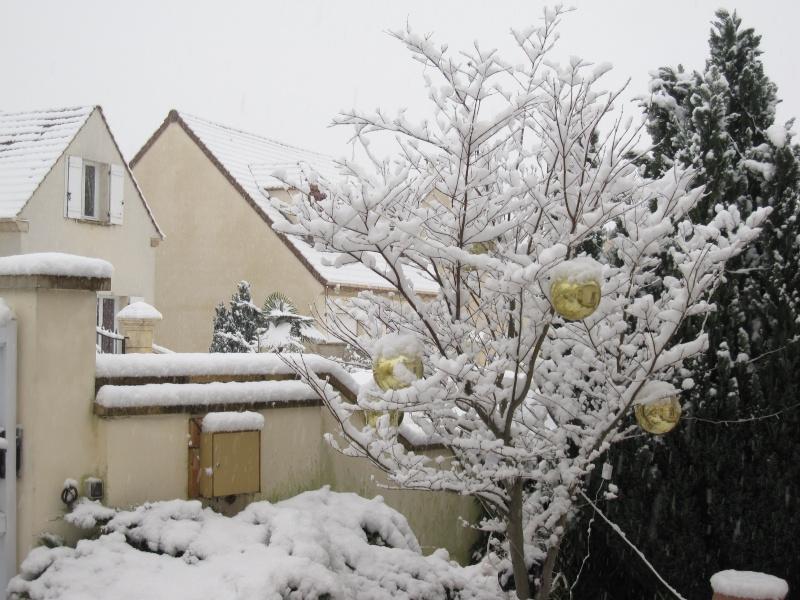 Vos photos sous la neige !!! Img_6623