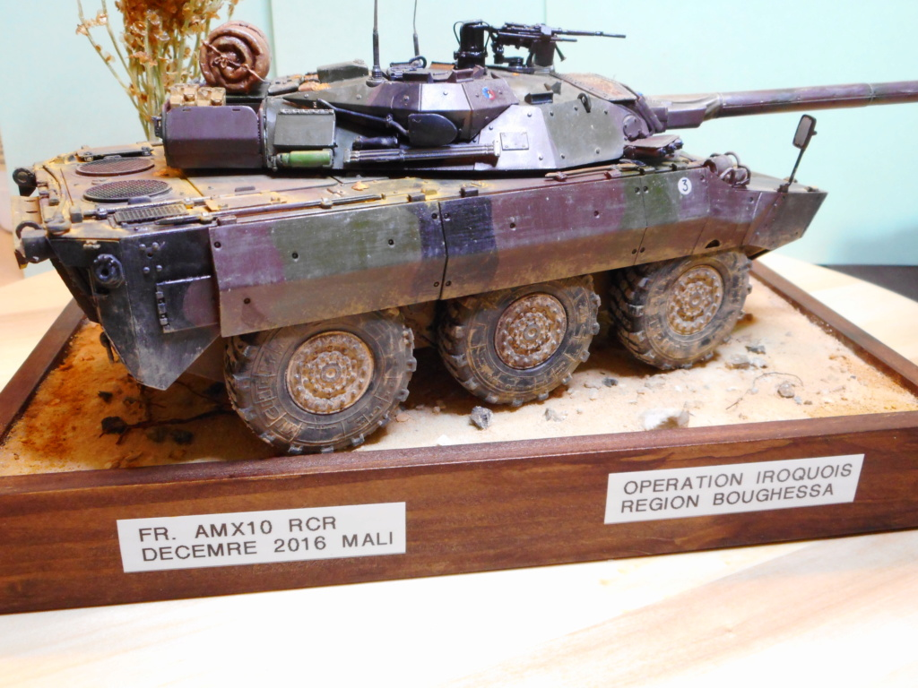 AMX 10 RCR au 1/35 ( Blast Model et Tiger Model ) Dscn0012
