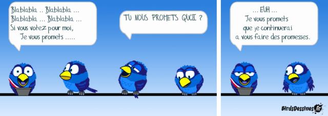 Les birds - Page 16 10164110