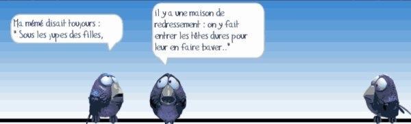 Les birds - Page 17 10366210