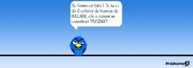 Les birds - Page 17 10377310